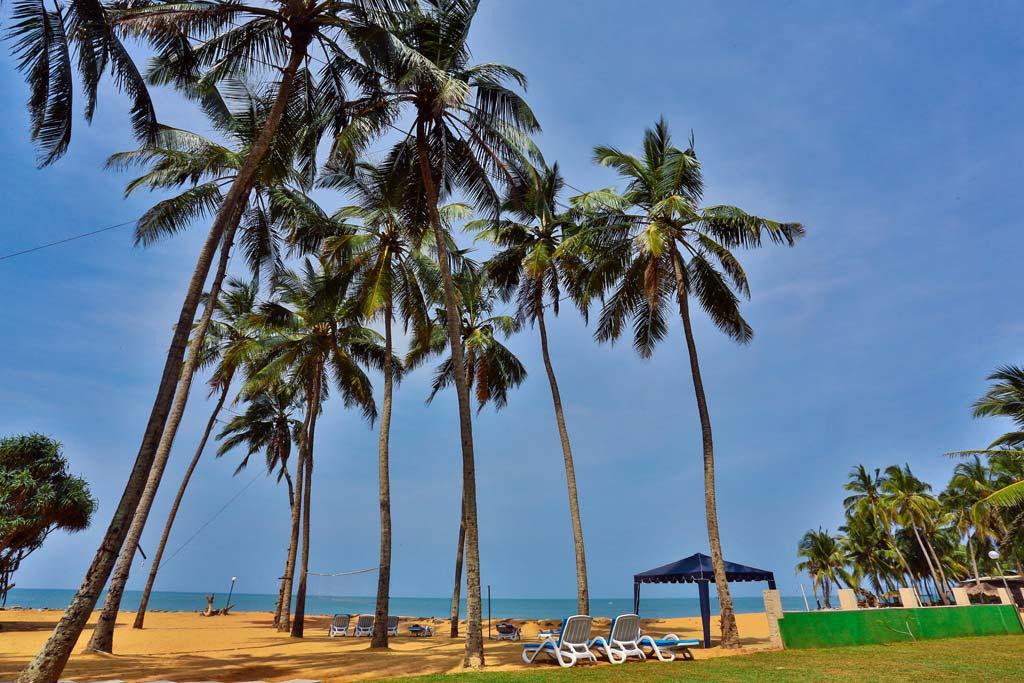 Things To Do Around Marawila Sri Lanka The Vacation Gateway