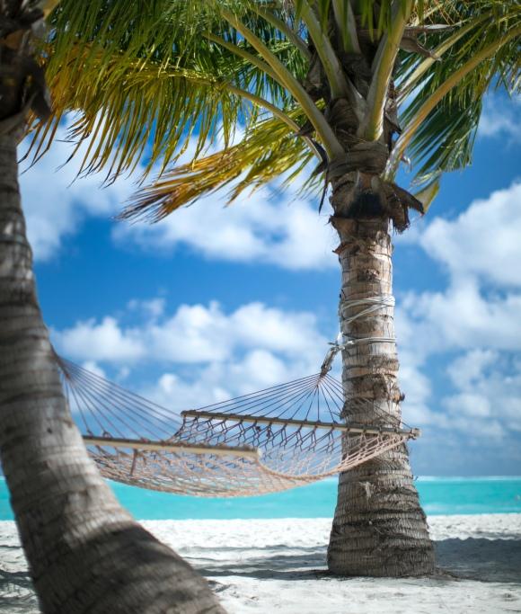 Ecotourism in the Maldives