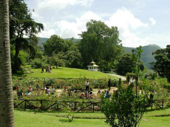 Hakgala Botanical Gardens